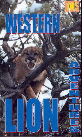 lion_video_cover.jpg